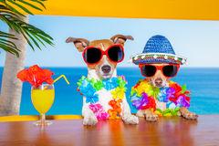 Minden idők leghülyébb nyaralói kifogasai